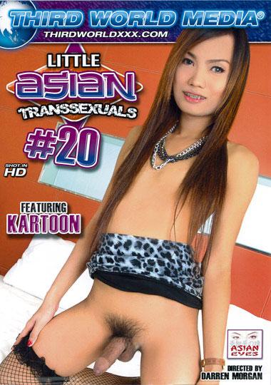 Little Asian Transsexuals 20
