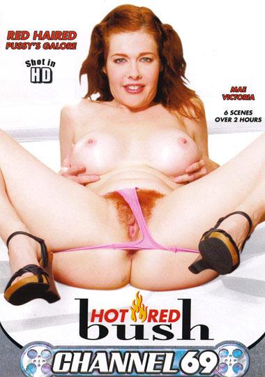 Hot Red Bush
